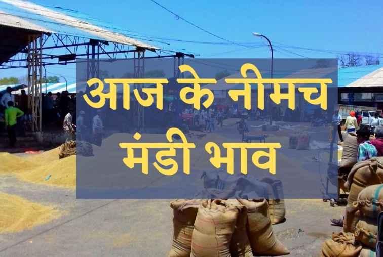 Neemuch mandi bhav today,